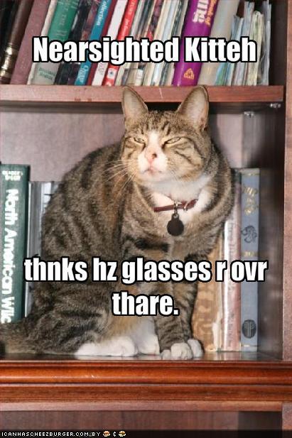 GlassesCat.jpg