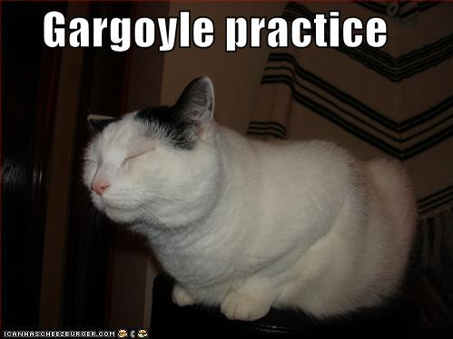 funny-picures-gargoyle-cat.jpg